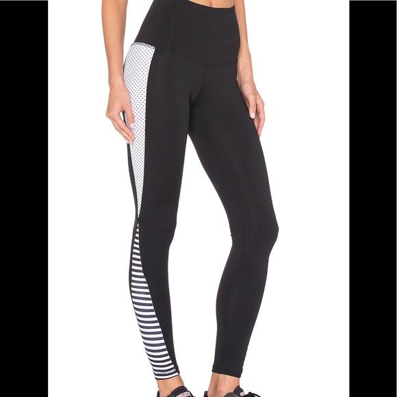 5dcce3ec48506 Strut This Pants | Womens Black The Grayson Legging | Poshmark